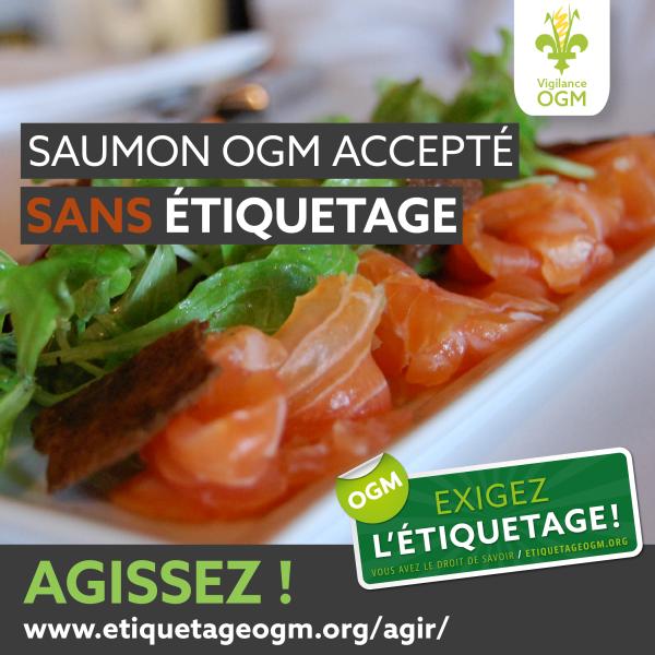 Saumon Ogm L Etiquetage Obligatoire N Est Pas Recommande