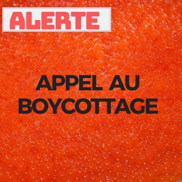 Appel au boycottage Aquabounty