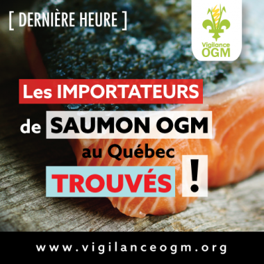 Importateurs de saumon GM