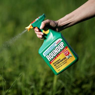 glyphosate bayer plaide coupable